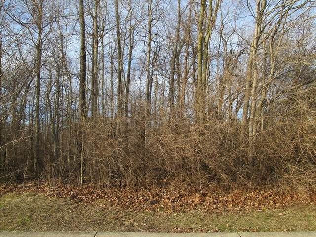 6090 Cedar Bend Way, Avon, IN 46123 (MLS #21698521) :: Richwine Elite Group