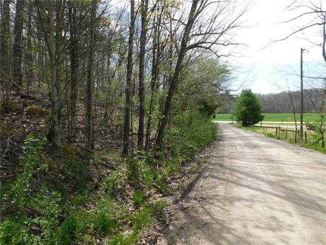 n/a Reed Hollow Road, Nashville, IN 47448 (MLS #21707342) :: The Indy Property Source