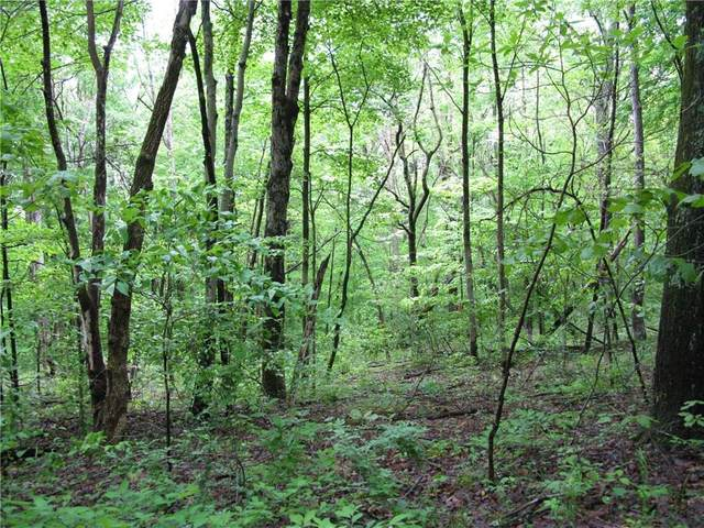 000 Owl Creek Road, Nashville, IN 47448 (MLS #21711154) :: The Indy Property Source