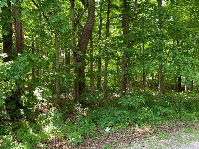 Lot 21 & 22 Indian Rocks, Rockville, IN 47872 (MLS #21716755) :: Anthony Robinson & AMR Real Estate Group LLC