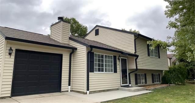 141 Meadow Creek Boulevard, Whiteland, IN 46184 (MLS #21744000) :: The ORR Home Selling Team