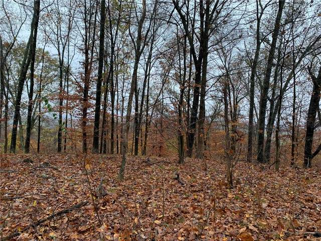 0 Town Hill Road, Nashville, IN 47448 (MLS #21749932) :: The Indy Property Source