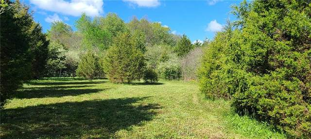 00 Keith Donaldson Road, Freetown, IN 47235 (MLS #21783927) :: The ORR Home Selling Team