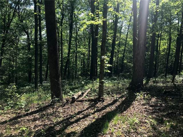 3201 N Lincoln Hill Road, Martinsville, IN 46151 (MLS #21784347) :: The Evelo Team