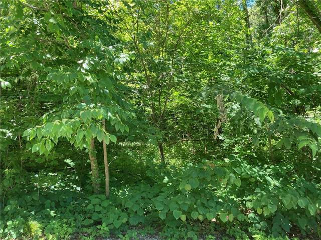 Lot 33 & 34 Cove Road, Rockville, IN 47872 (MLS #21788451) :: Mike Price Realty Team - RE/MAX Centerstone