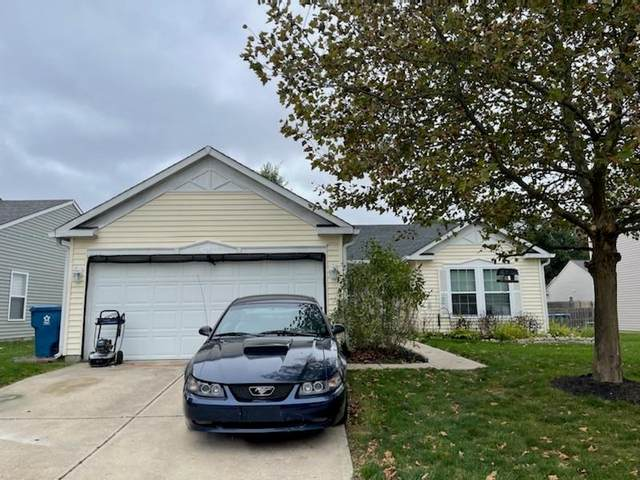 Indianapolis, IN 46259 :: Ferris Property Group