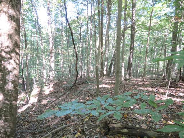 0 S Conservation Club Lane, Morgantown, IN 46160 (MLS #21820634) :: AR/haus Group Realty