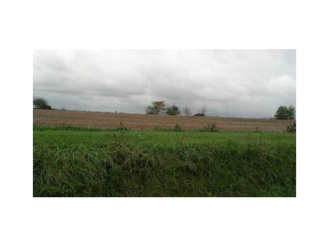6663 S State Road 109, Knightstown, IN 46148 (MLS #21321841) :: The Indy Property Source