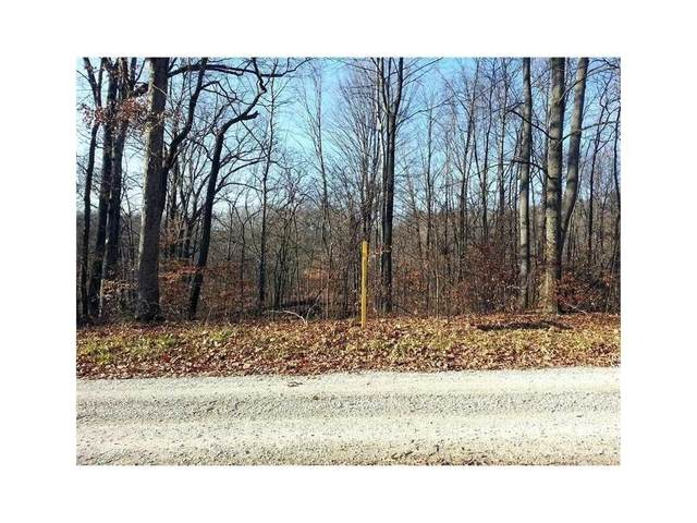 Lot 0 Antelope Drive, Nineveh, IN 46164 (MLS #21693063) :: Anthony Robinson & AMR Real Estate Group LLC