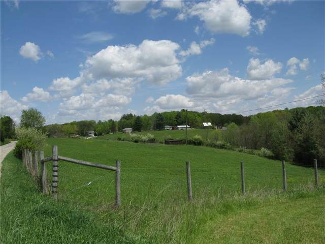 0 Ford Ridge Road, Nashville, IN 47448 (MLS #21698203) :: The Indy Property Source