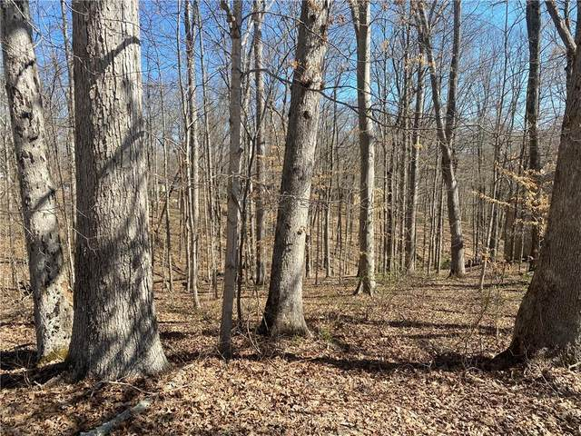 Lot 5 Oak Run Drive, Nashville, IN 47448 (MLS #21765641) :: Heard Real Estate Team | eXp Realty, LLC