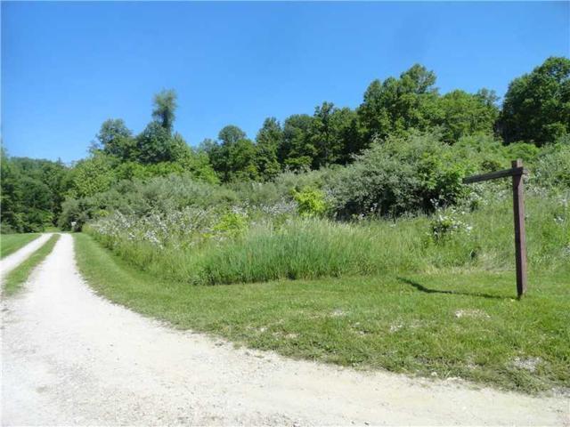 000 Deerfield Trail, Spencer, IN 47460 (MLS #21359746) :: AR/haus Group Realty