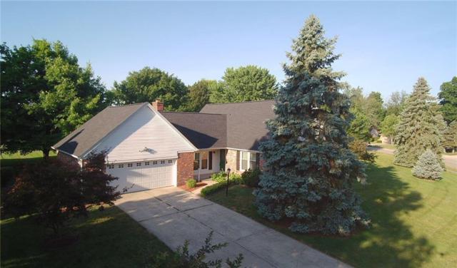 533 S Oakwood Drive, Greenwood, IN 46142 (MLS #21566828) :: Indy Plus Realty Group- Keller Williams