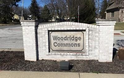263 N Woodridge Drive, Pittsboro, IN 46167 (MLS #21548536) :: The ORR Home Selling Team