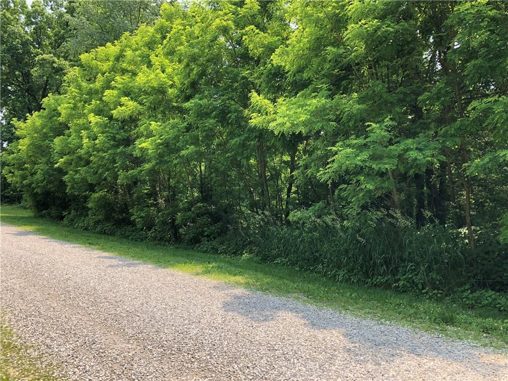 2458 Oak Ridge Way - Photo 1