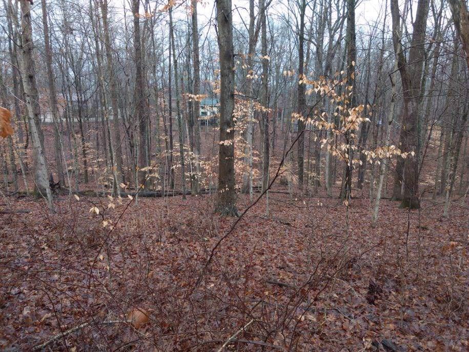 0 Oak Run Drive - Photo 1