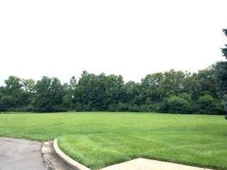1260 Lincoln Park Boulevard, Greenwood, IN 46142 (MLS #21688903) :: The Indy Property Source
