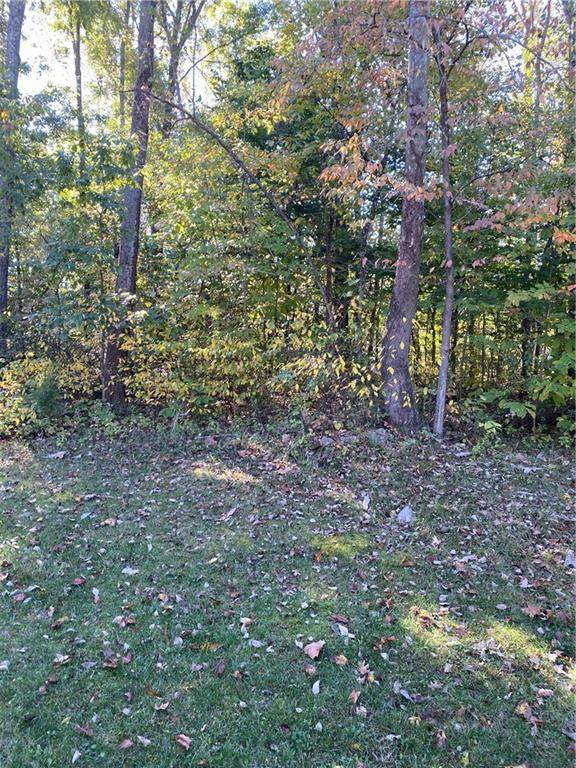 1021 (Lot 24) E Nicholas Lane, Ellettsville, IN 47429 (MLS #21729790) :: David Brenton's Team