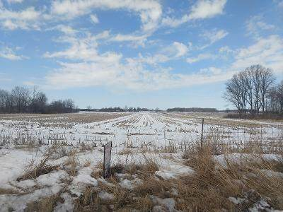 0 Us Hwy 31 N, Arcadia, IN 46030 (MLS #21768124) :: Mike Price Realty Team - RE/MAX Centerstone