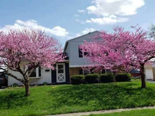 8909 Frontenac Road, Indianapolis, IN 46226 (MLS #21777780) :: Anthony Robinson & AMR Real Estate Group LLC