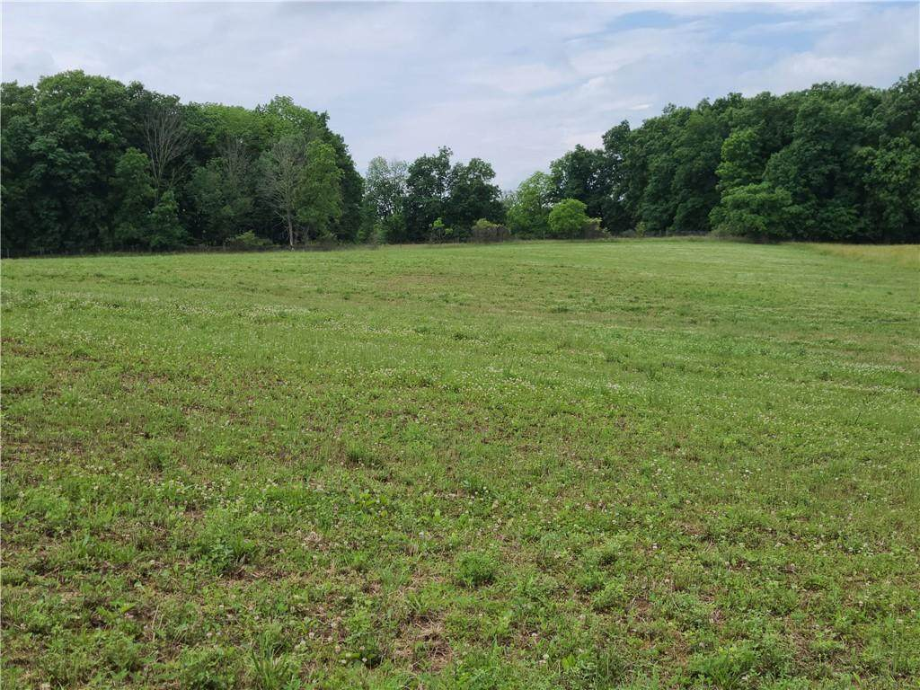 000 Mineral Springs Road - Photo 1