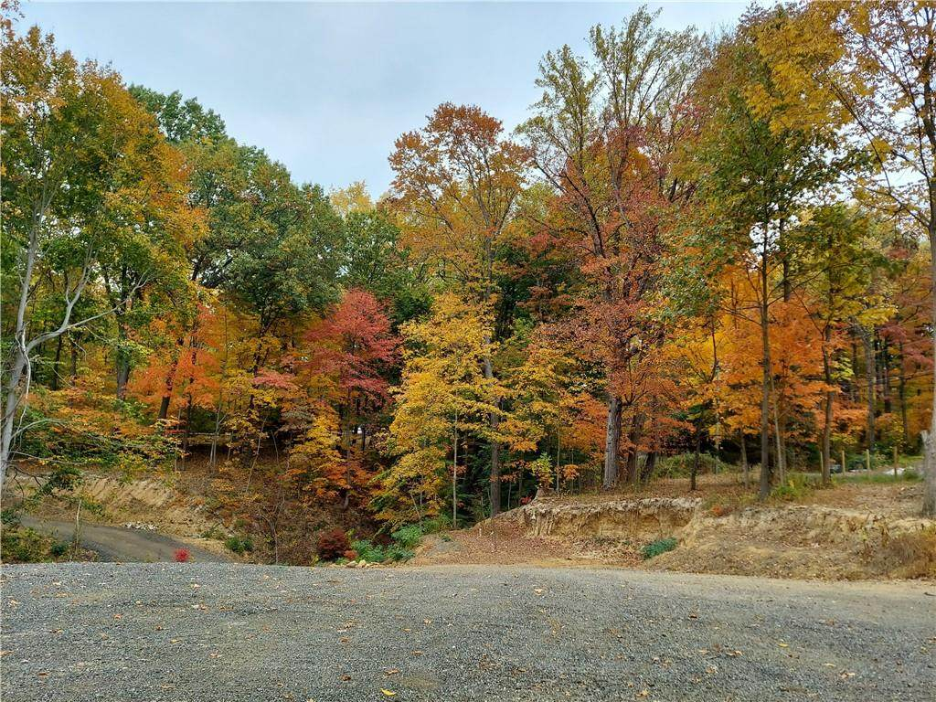 7360 Goat Hollow Road - Photo 1