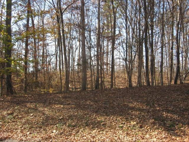 Lot 21 Woodfield Court, North Vernon, IN 47265 (MLS #21502285) :: Indy Plus Realty Group- Keller Williams