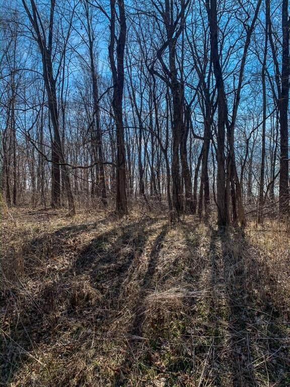 636 Gettysburg, Coatesville, IN 46121 (MLS #21696014) :: The Indy Property Source