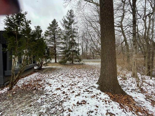 171 Sierra Drive, Cicero, IN 46034 (MLS #21761457) :: Mike Price Realty Team - RE/MAX Centerstone