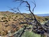Sage Flats Dr - Photo 21