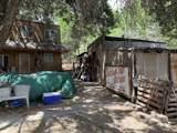 3705 Walker Creek Rd - Photo 6