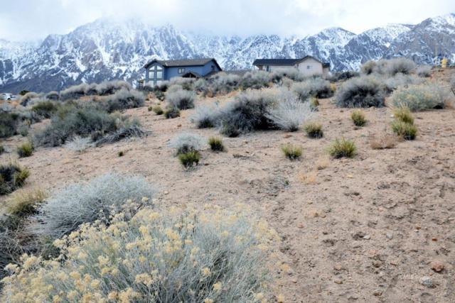 4814 Sherwin Trail, Bishop, CA 93514 (MLS #2310894) :: Millman Team
