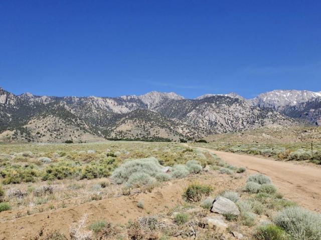 Sage Flats Dr, Olancha, CA 93549 (MLS #2311060) :: Millman Team