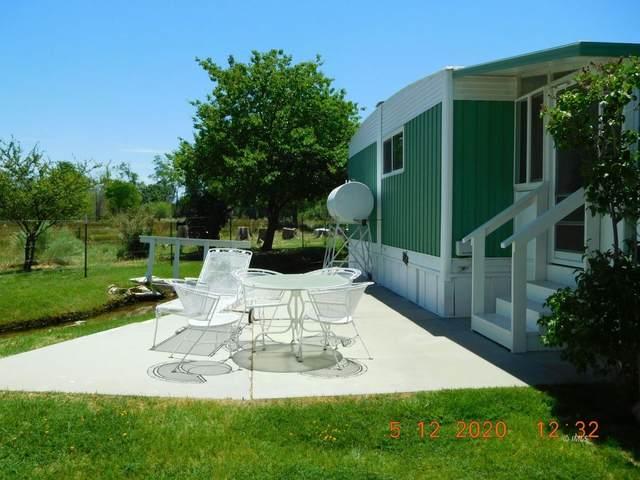 1478 Argyle Ln, Bishop, CA 93514 (MLS #2311341) :: Millman Team