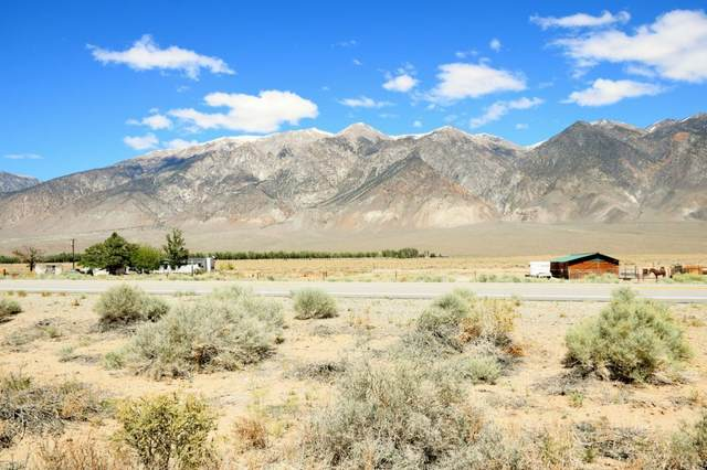 Highway 6, Hammil Valley, CA 93514 (MLS #2311345) :: Millman Team