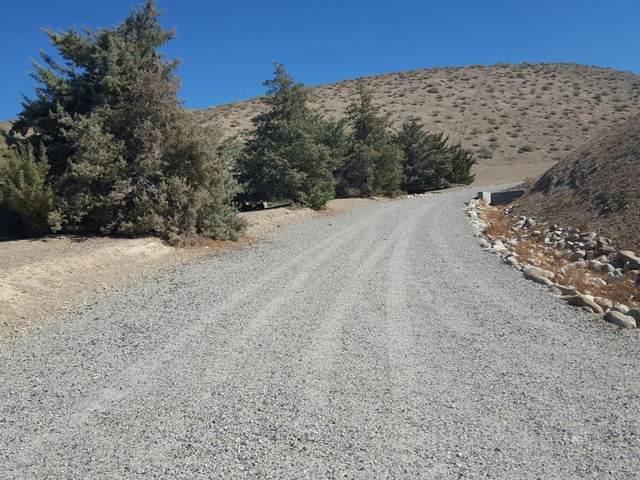 Rudolph Ranch Road, Bishop, CA 93514 (MLS #2311436) :: Millman Team