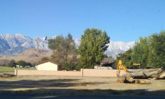 Bush & Brewery, Lone Pine, CA 93545 (MLS #2311478) :: Millman Team