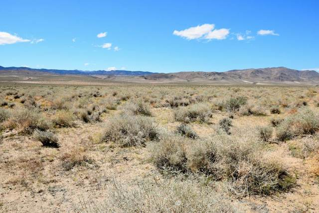 Highway 6, Hammil Valley, CA 93514 (MLS #2311345) :: Millman Team