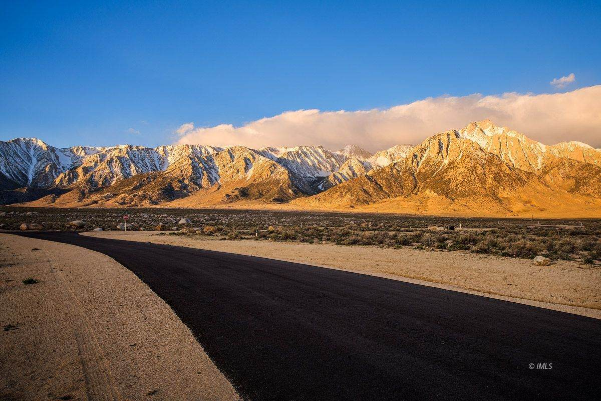 4220 Mt Langley Ln - Photo 1