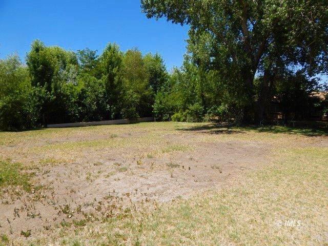 125 Olivia Ln, Big Pine, CA 93513 (MLS #2311419) :: Millman Team