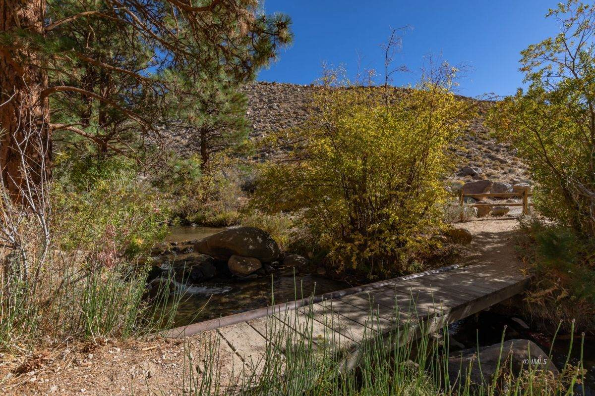215 Upper Canyon Rd - Photo 1