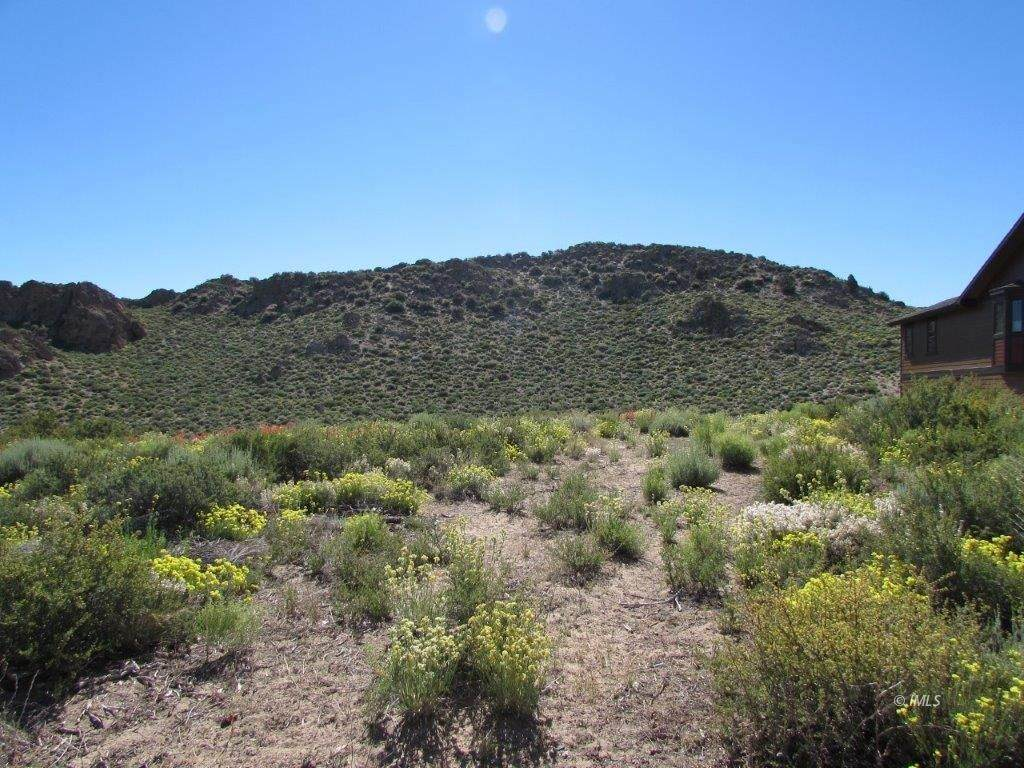 Lot 42 Sierra Springs - Photo 1