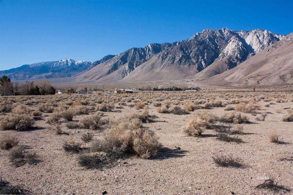 Inyo/Olancha/Cartago/N Mojave - Photo 1