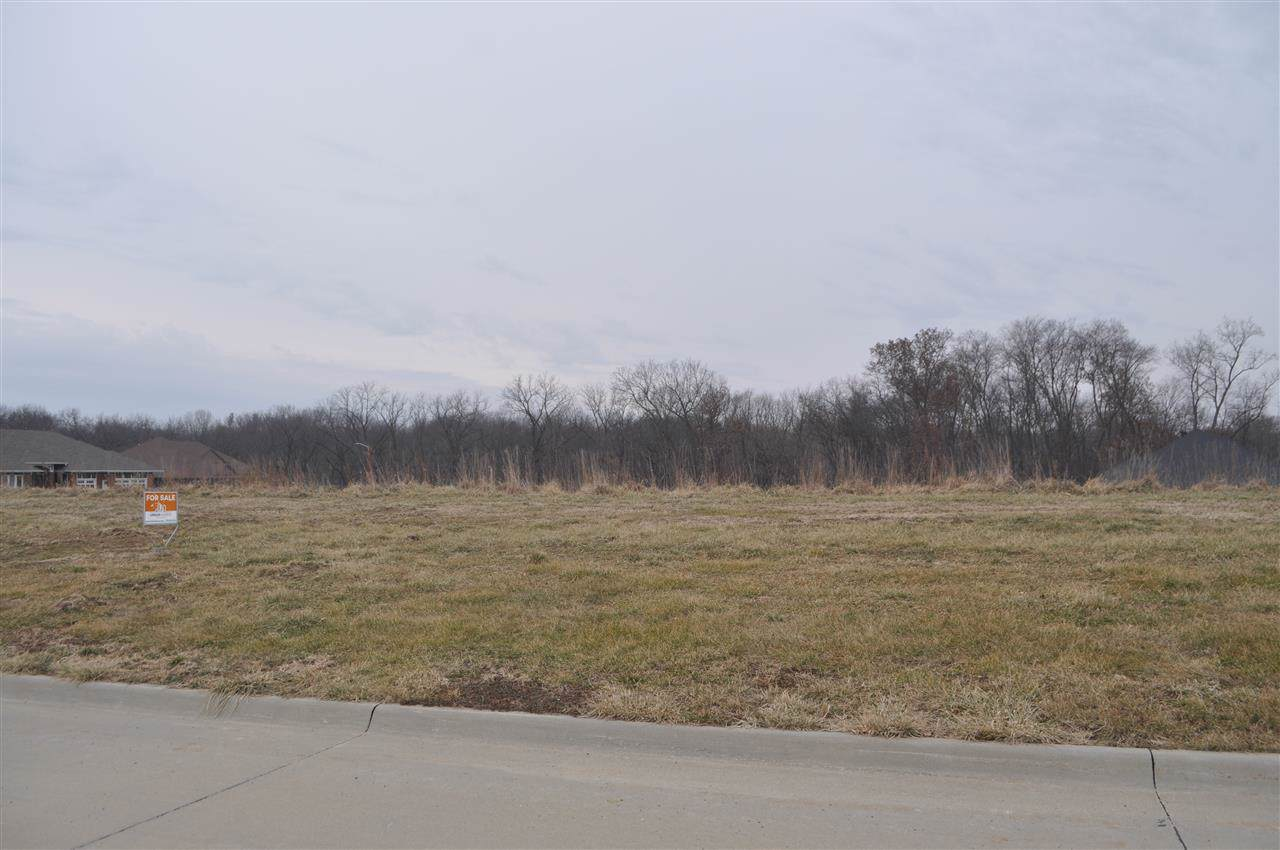 Lot 12 Palisades - Photo 1