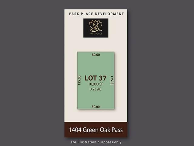 1404 Green Oak Pass - Photo 1