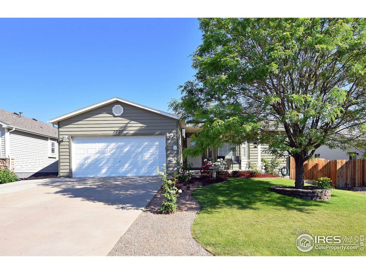 3001 Spring Cove Dr - Photo 1