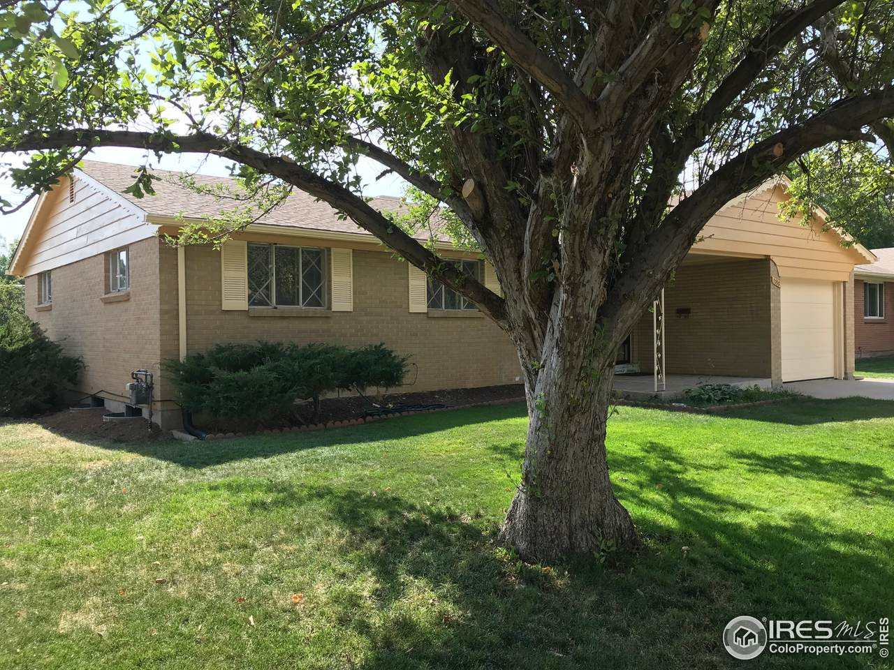 1330 6th Ave - Photo 1