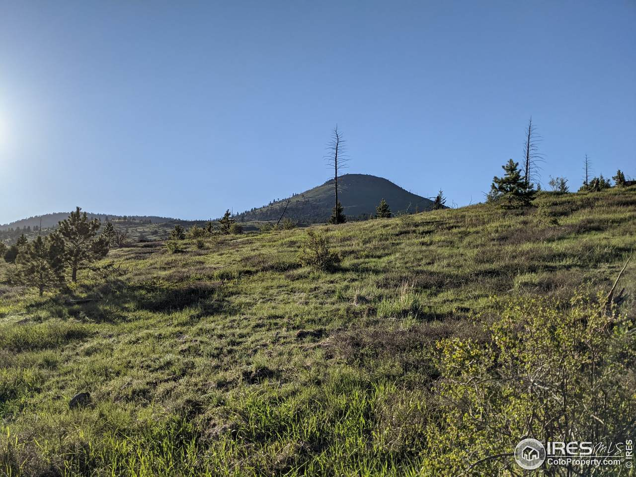 55 Old Townsite Rd - Photo 1