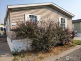 517 Trilby Rd - Photo 2