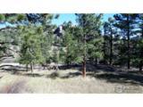 300 Green Pine Ct - Photo 4